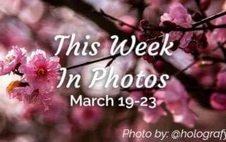 This week in photos March 19 to 23 in Victoria BC, Instagram hashtag yyj photo by @holografyx