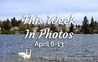 This week in photos April 7 to 13 in Victoria BC, Instagram hashtag yyj photo by @mrnumeros