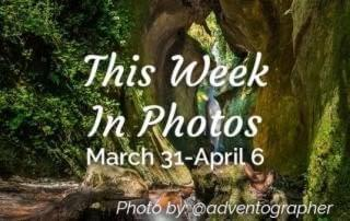 This week in photos March 31 to April 6 in Victoria BC, Instagram hashtag yyj photo by @adventograph