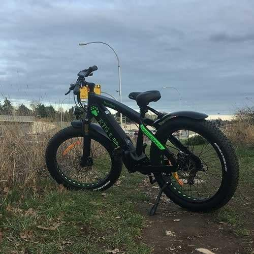 Black Bear - High Performance Electric Fat Bike