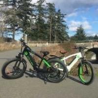 Black Bear and Spirit Bear - High Performance Electric Fat Bikes