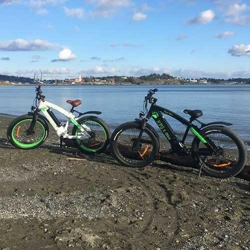 Black Bear and Spirit Bear - High Performance Electric Fat Bikes