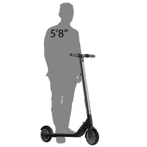 Ninebot Electric Scooter size comparison