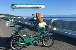 Pedal Coach friends pedal car rentals victoria bc