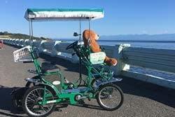 pedal coach group pedal car rentals victoria bc 4 ride. Black Bedroom Furniture Sets. Home Design Ideas