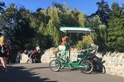 Pedal Coach couples pedal car rentals victoria bc