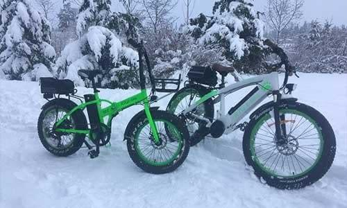 The 500 XT and Spirit Bear enjoying a ride in the snow