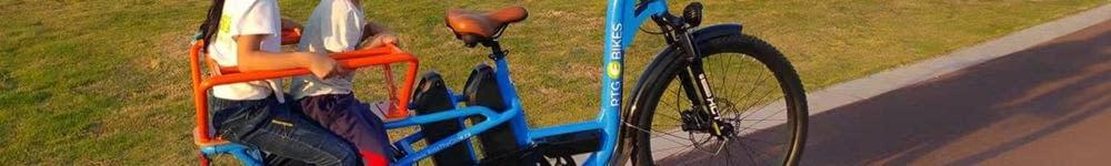 RTG Cargoroo e-cargo bike, kid hauler