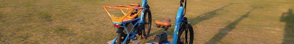 RTG Cargoroo fully loaded e-cargo bike